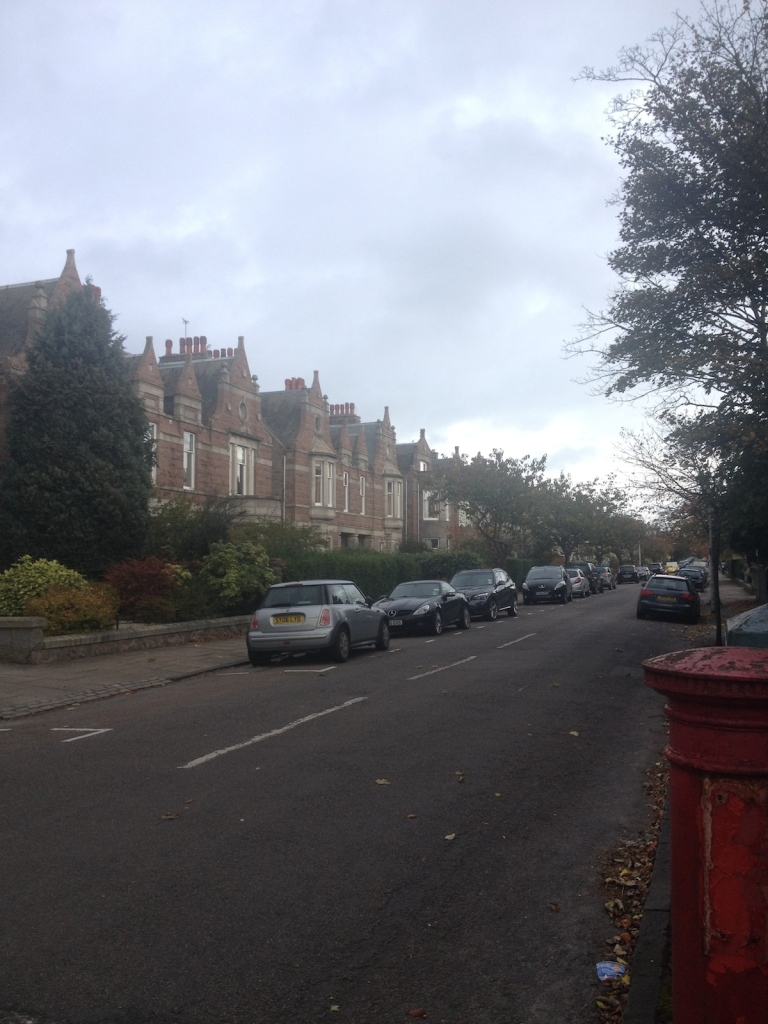 A residential street in an expensive part of town. This photo was also taken when I couldn't see properly.