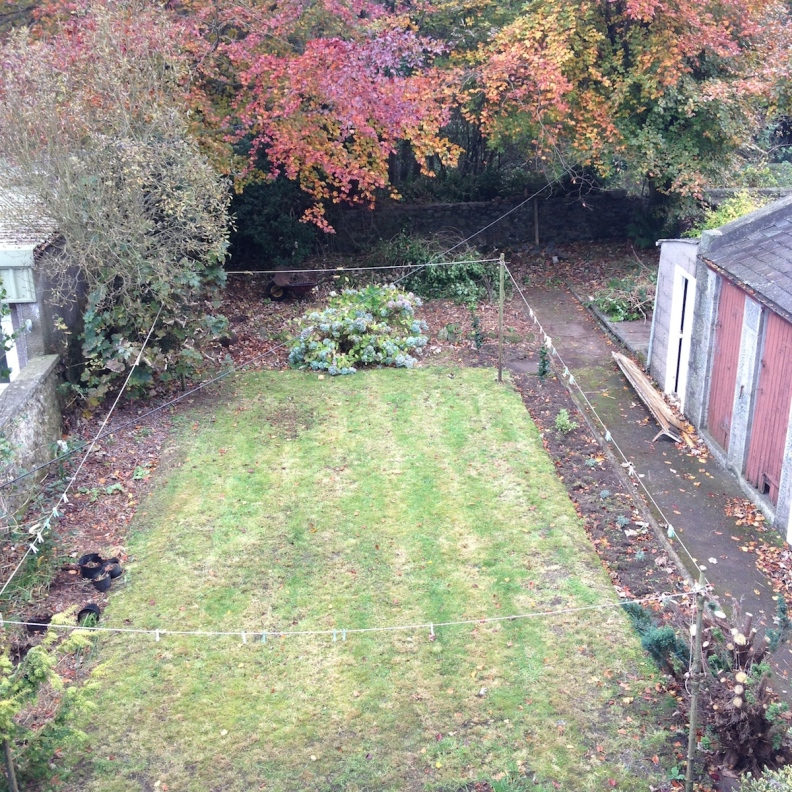 Our backyard from my office. It's a little bare because I've just pulled out a heap of weeks and other things. It's a work in progress. Hopefully by next summer it will look amazing :)