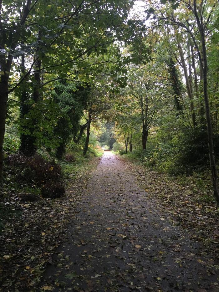 A rainy autumn day on the bikepath